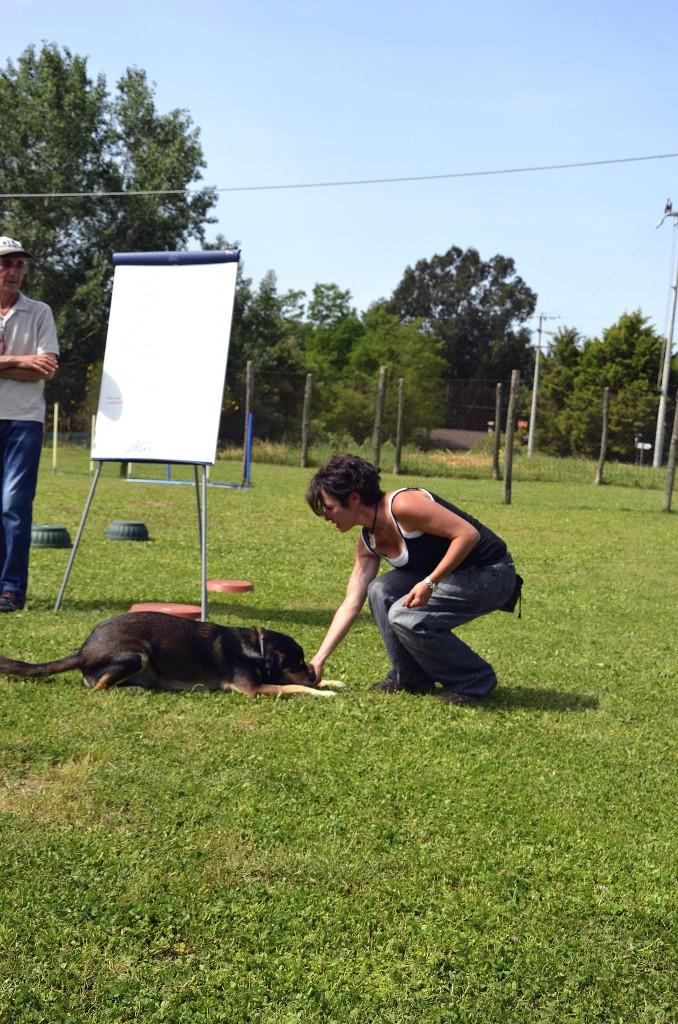 Addestramento-e-Premio-Laura-14-678x1024