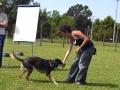 Addestramento-e-Premio-Laura-11-678x1024