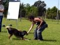 Addestramento-e-Premio-Laura-12-678x1024