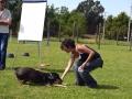 Addestramento-e-Premio-Laura-13-678x1024