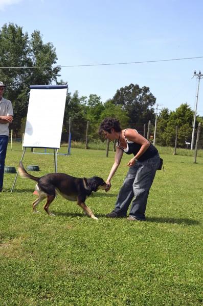 Addestramento e Premio Laura (11)