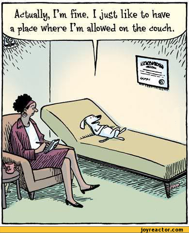 comics-bizarro-dog-psychologist-592028